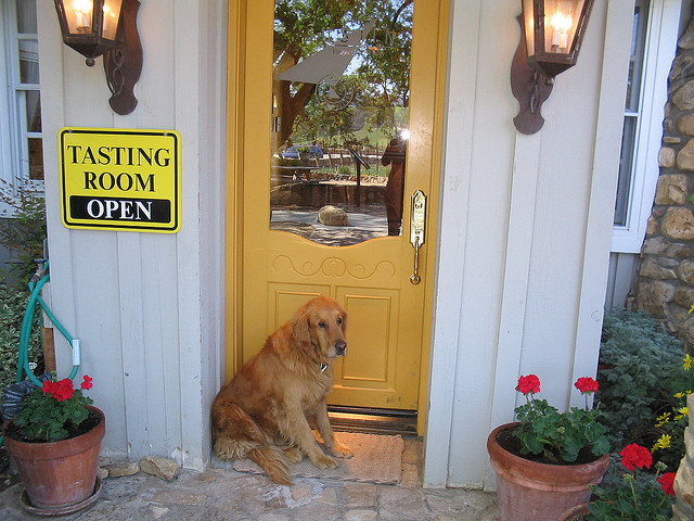 napa-valley-dog-lovers