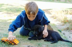 kids-moving-adopt-pet