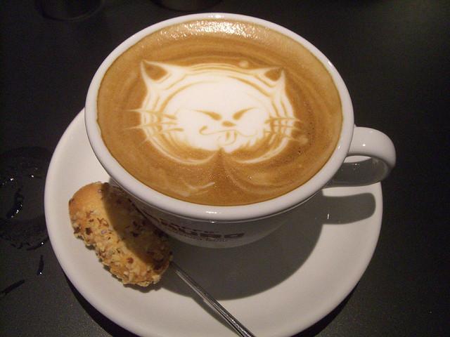 best-cities-cat-people-cappucino