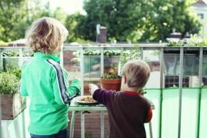moving-kids-indoor-plants